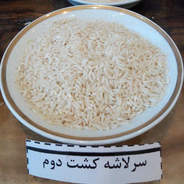 برنج سرلاشه کشت 2 فریدونکنار معطر و ممتاز- ده کیلویی