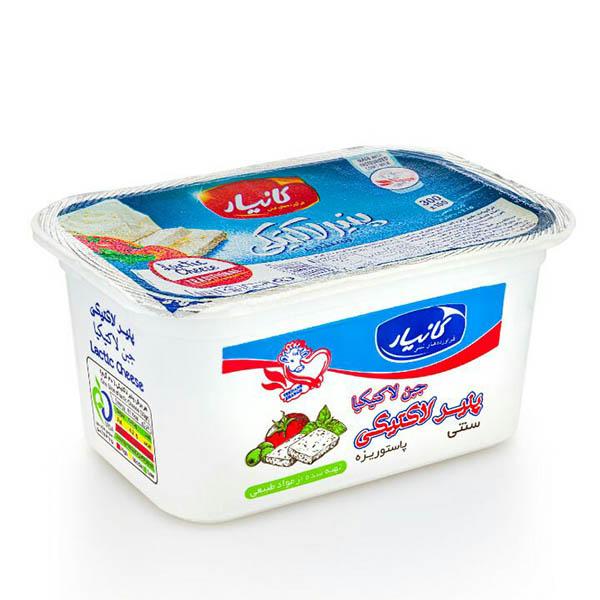 پنیر لاکتیکی کانیار- 300 گرم