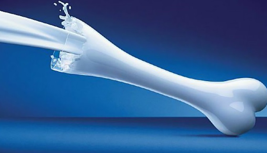 milk bones 2 - خرید لبنیات از سوپرمارکت اینترنتی ارزانسرا