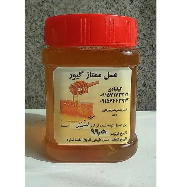 عسل ممتاز گشنیز گیور – نیم کیلوگرم