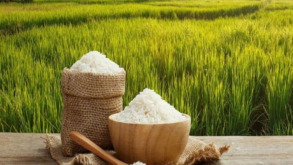 راه های تشخیص برنج کهنه از تازه